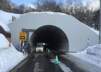 トンネル壁面コンクリート保護、レックス工法